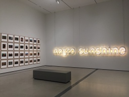 Decoding Sunshine-Glenn Ligon at the Broad