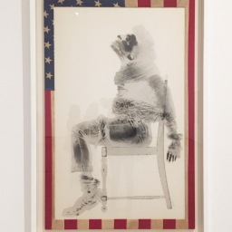 Artist a Day: David Hammons